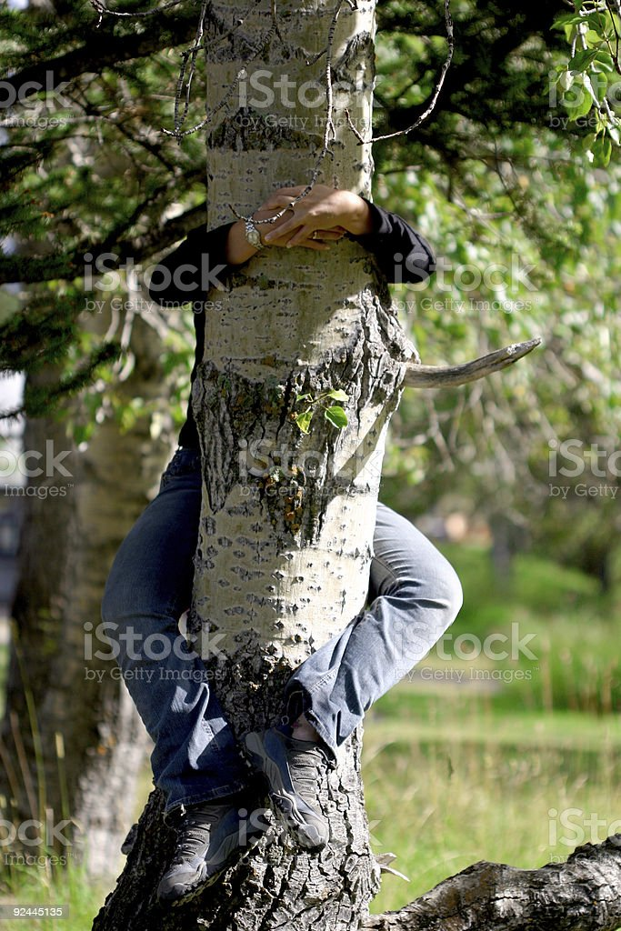 Tree hugging royalty-free stock photo