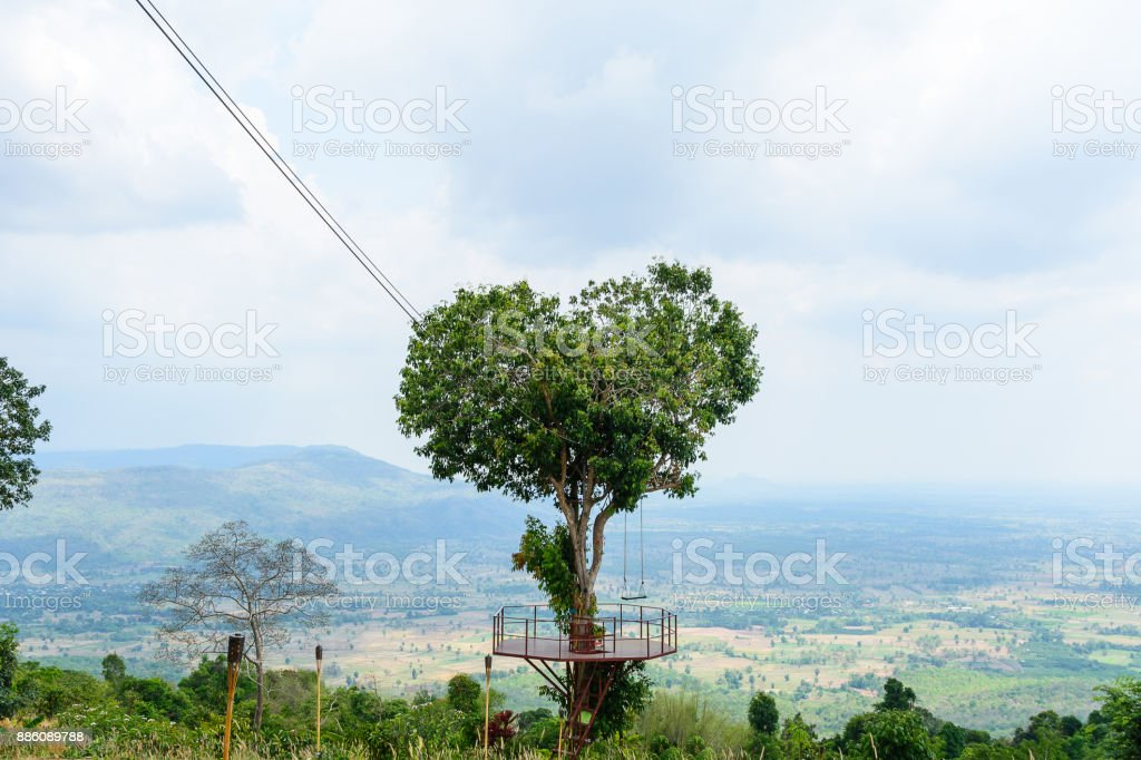Tree in a heart shape behind is the scene of city down the mountian stock photo