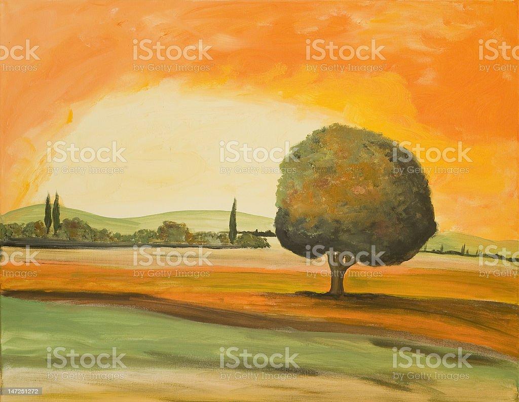 Tree in a Tuscany Landscape royalty-free stock photo