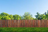 istock tree in garden and wooden backyard fence with grass 1255936061