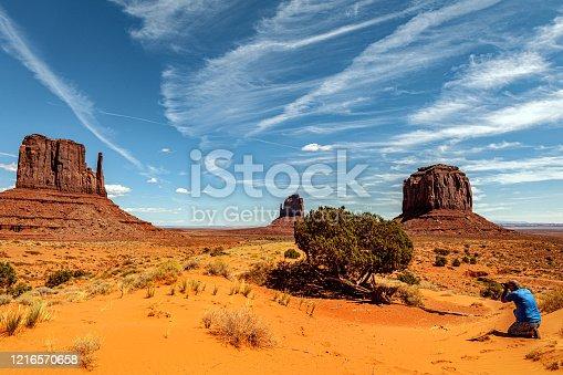 Tree in Monument Valley Tribal Park, Utah, USA,Nikon D3x