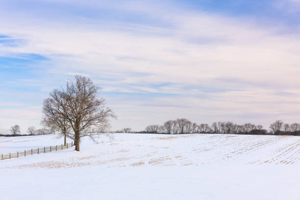 Royalty Free Winter Farm Field Pictures Images And Stock