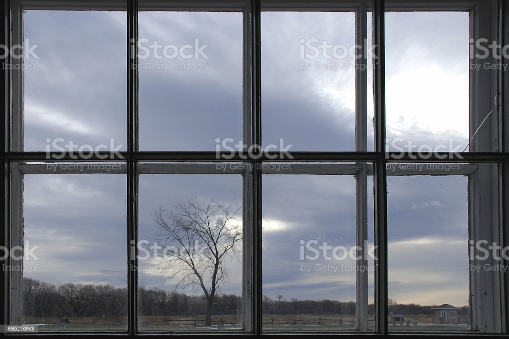 Tree in the dusk through a broken window royalty-free stock photo