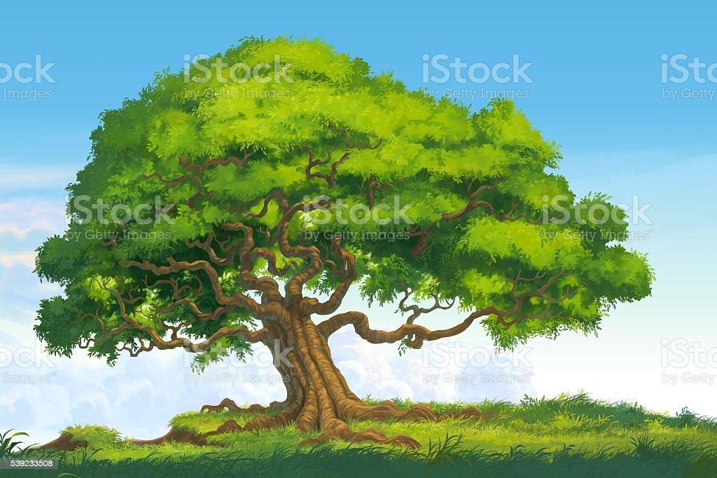 tree isolate illustration royalty-free stock photo
