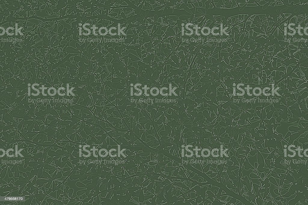 tree leaf stock photo