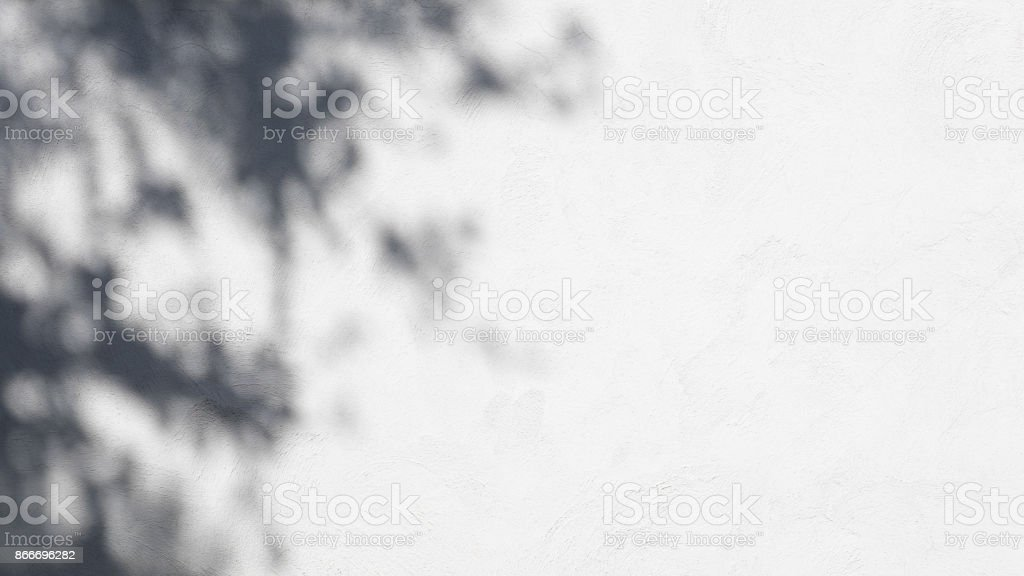 Tree leaves shadow on wall background. stock photo