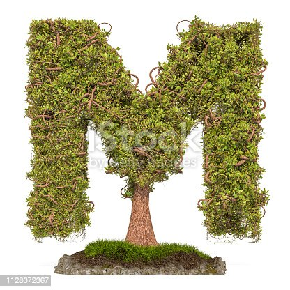 istock Tree letter M. Tree in shaped of letter M, 3D rendering isolated on white background 1128072367