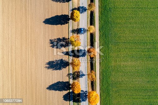 1061550162 istock photo Tree Lined Autumn Road from Above 1065377094