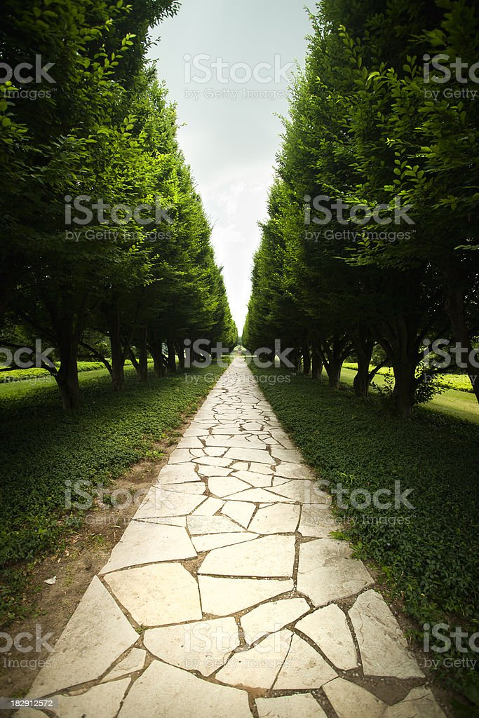 Tree lined garden path royalty-free stock photo