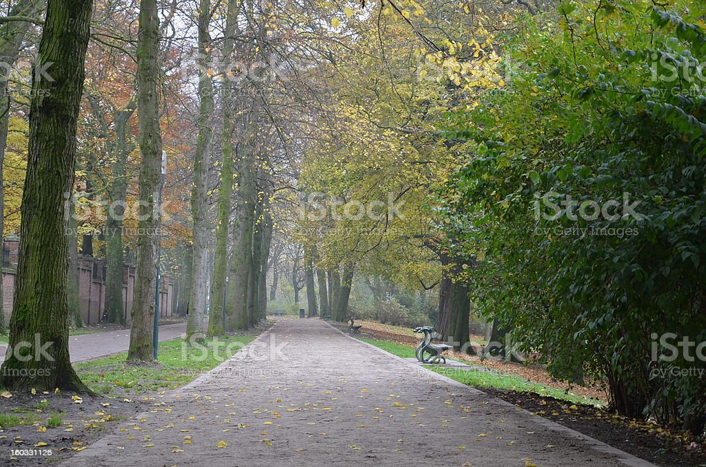 Tree lined path in Fall season at Bruges, Belgium royalty-free stock photo