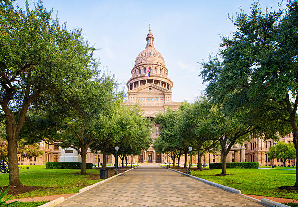 Tree lined pathway to Texas Capitol in Austin stock photo