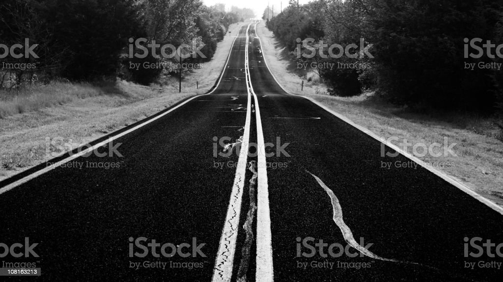 Tree Lined Road in Rural Area, Black and White