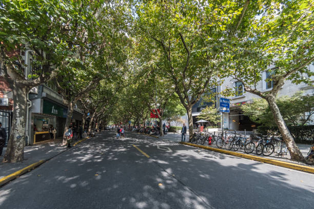 Tree lined roads in the French Concession area of Shanghai - Xuhui Districts stock photo