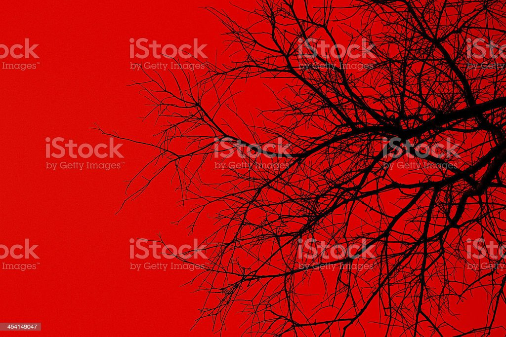 Tree of death. royalty-free stock photo