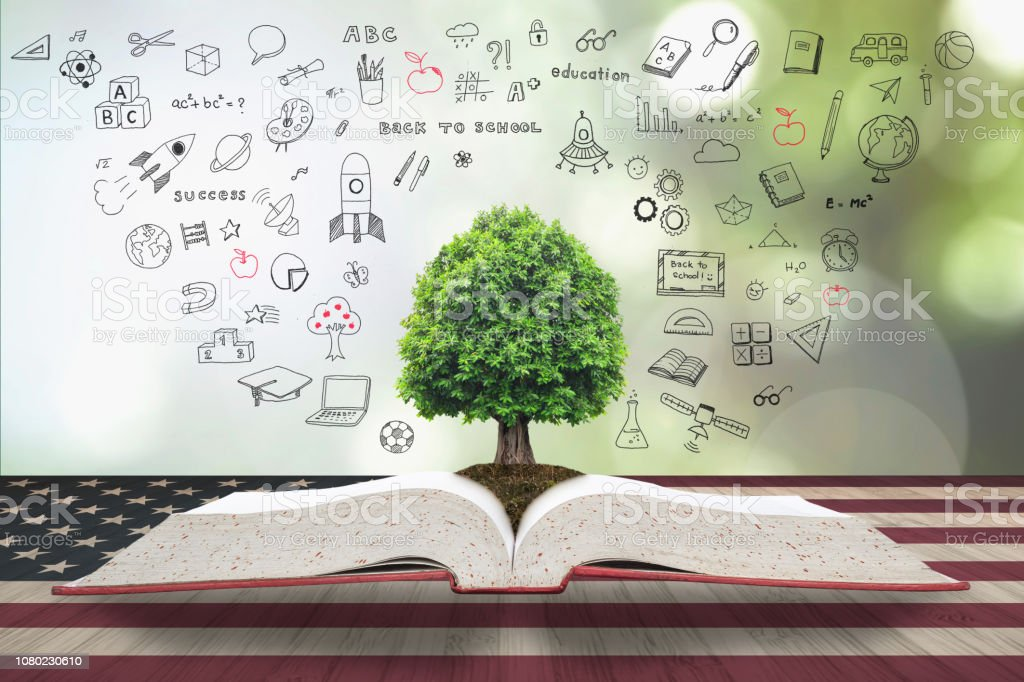 Árvore do conhecimento e vida crescendo de arquivo grande abrem o livro com doodle no padrão de bandeira EUA na mesa de madeira: lido através do conceito de dia de América - foto de acervo