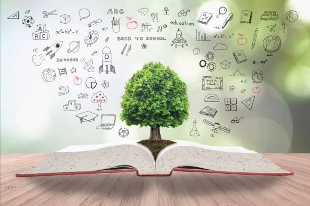 árvore do conhecimento e da vida crescendo em solo de livro aberto de arquivo grande com criativa doodle à mão livre, desenhando na mesa de madeira - vida de estudante - fotografias e filmes do acervo