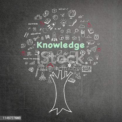 977488078 istock photo Tree of knowledge education concept on black chalkboard background with doodle 1145727683