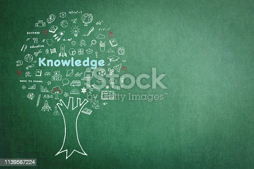977488078 istock photo Tree of knowledge education concept on green chalkboard background with doodle 1139567224