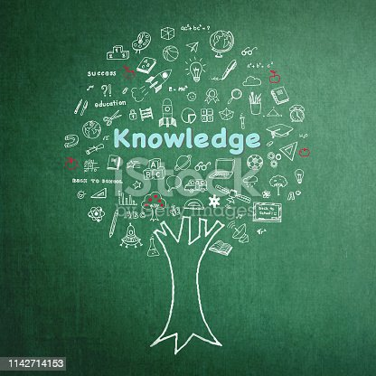 977488078 istock photo Tree of knowledge education concept on green chalkboard background with doodle 1142714153