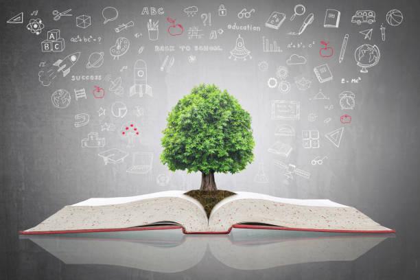 árvore do conhecimento, crescendo em livro aberto com doodle para o conceito de investimento e sucesso educativo - vida de estudante - fotografias e filmes do acervo