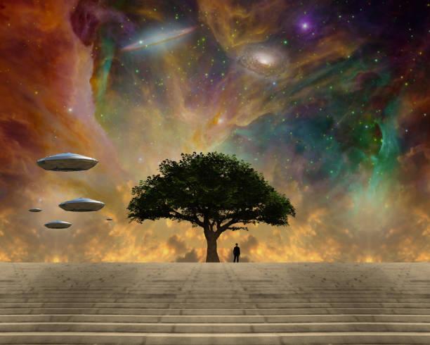 livets träd och rymdslöjd - earth from space bildbanksfoton och bilder
