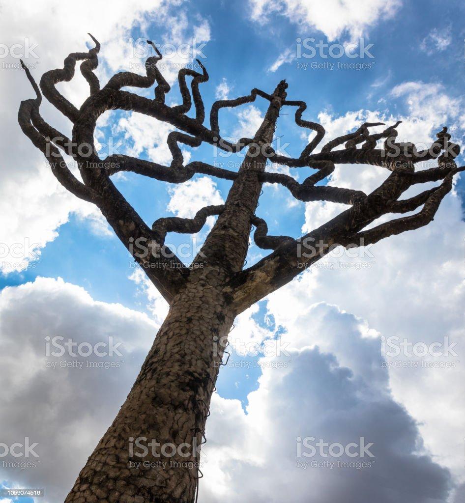Árbol de la vida - foto de stock