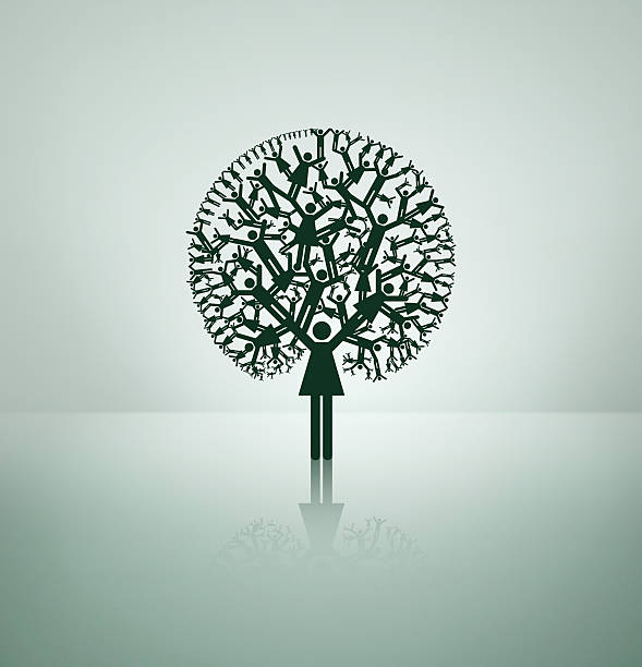 tree of life - family trees stock photos and pictures