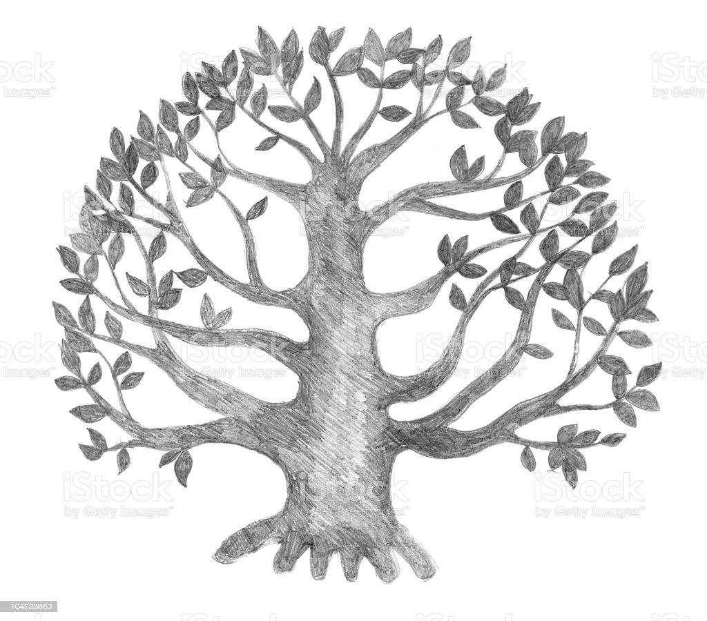 Baum Des Lebens Skizze Stock Fotografie Und Mehr Bilder Von Ast