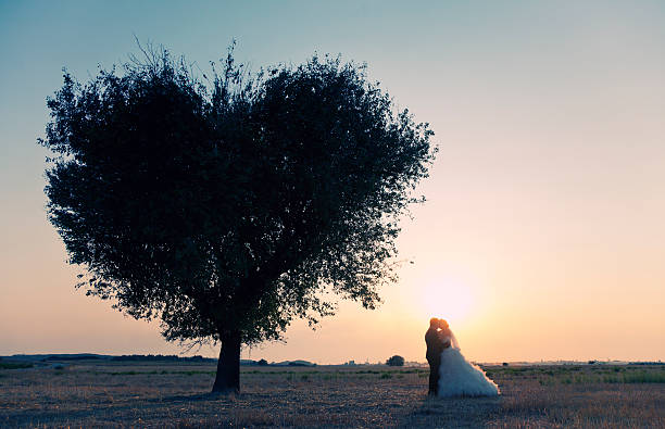 Baum of Love – Foto