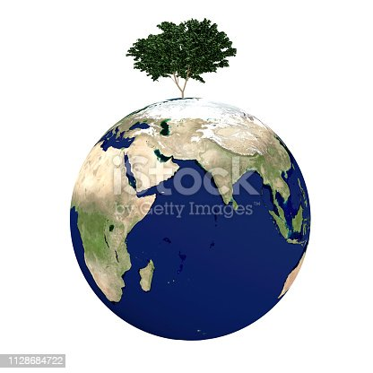 tree on earth ,Elements of this image furnished by NASA,3D rendering