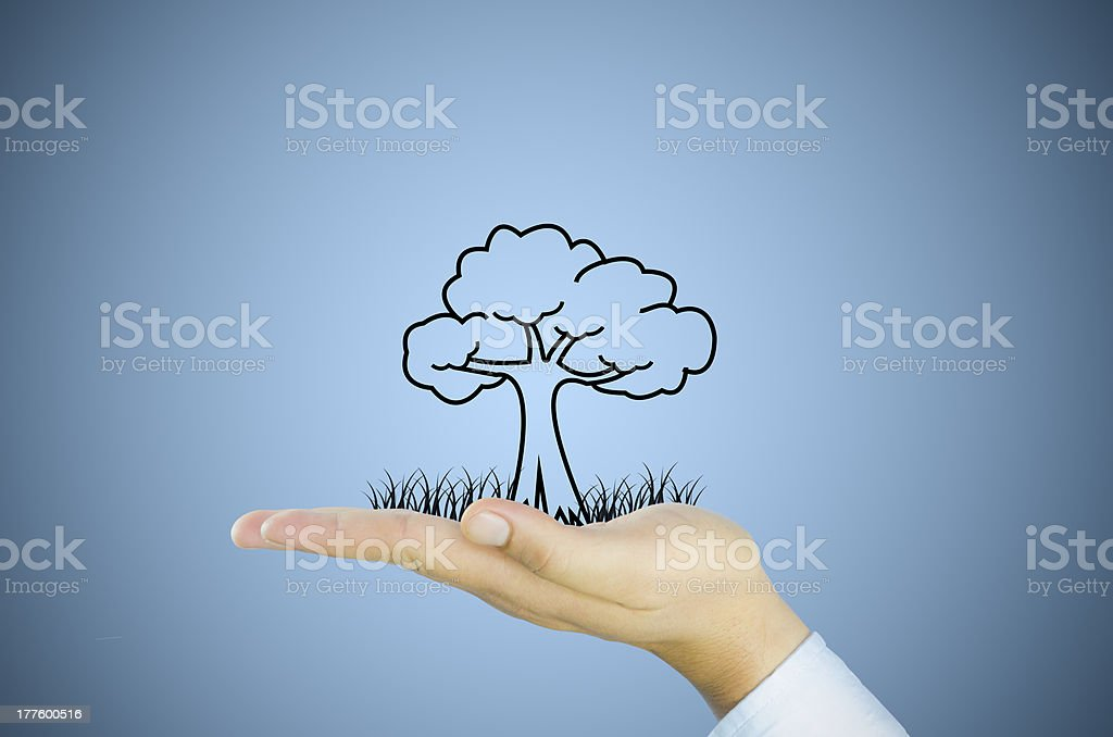 tree on human hand royalty-free stock photo