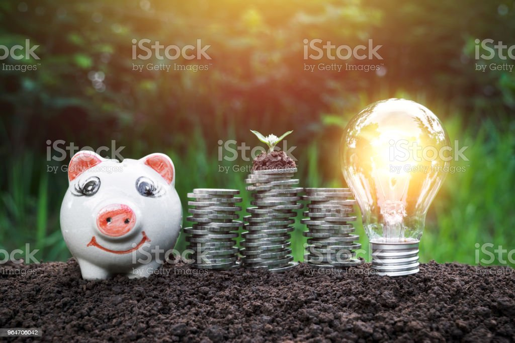 Tree on the coins have a piggy bank and light bulb next to on the ground and complete in nature background. royalty-free stock photo