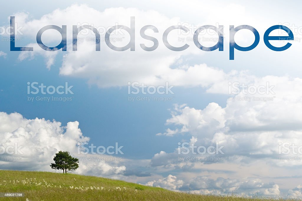 tree on the hilltop at summer day stock photo