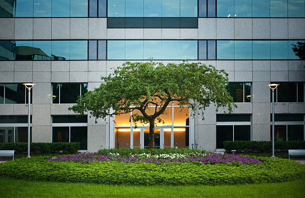 Tree outside office building Modern office building with attractive landscaping. Also see:  landscaped stock pictures, royalty-free photos & images