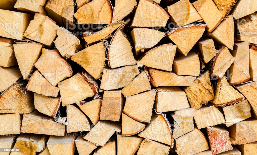 Tree pattern with wood texture. stock photo