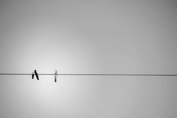 木ペグ - ケーブル線 ストックフォトと画像