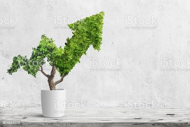 Tree picture id924834270?b=1&k=6&m=924834270&s=612x612&h=wsfuwhhikybfxvg8rdh2y9i0jpxw6 ltb iokp8kahc=