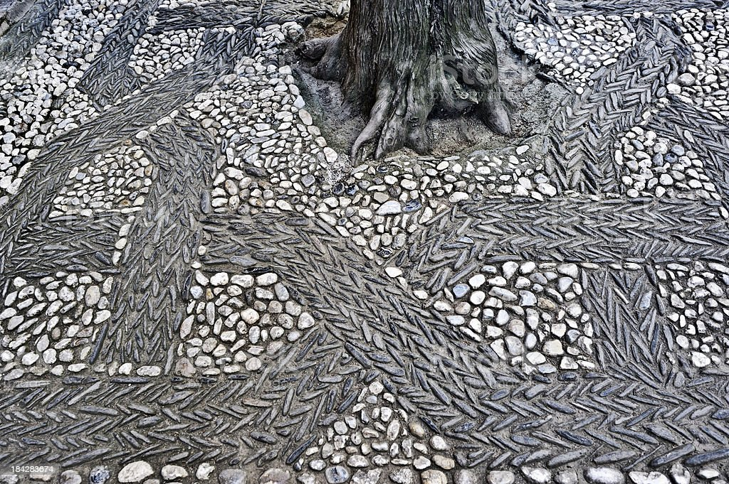 \'Tree planted in pebbled patio areas in the courtyard of one of the...