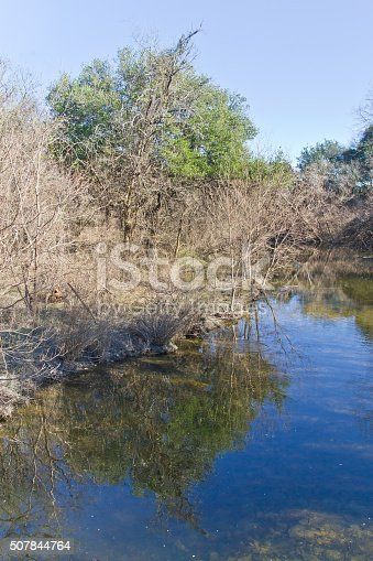 istock Tree reflection at Brushy Creek Regional Trail 507844764