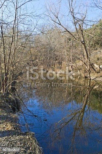 istock Tree reflection at Brushy Creek Regional Trail 507844822