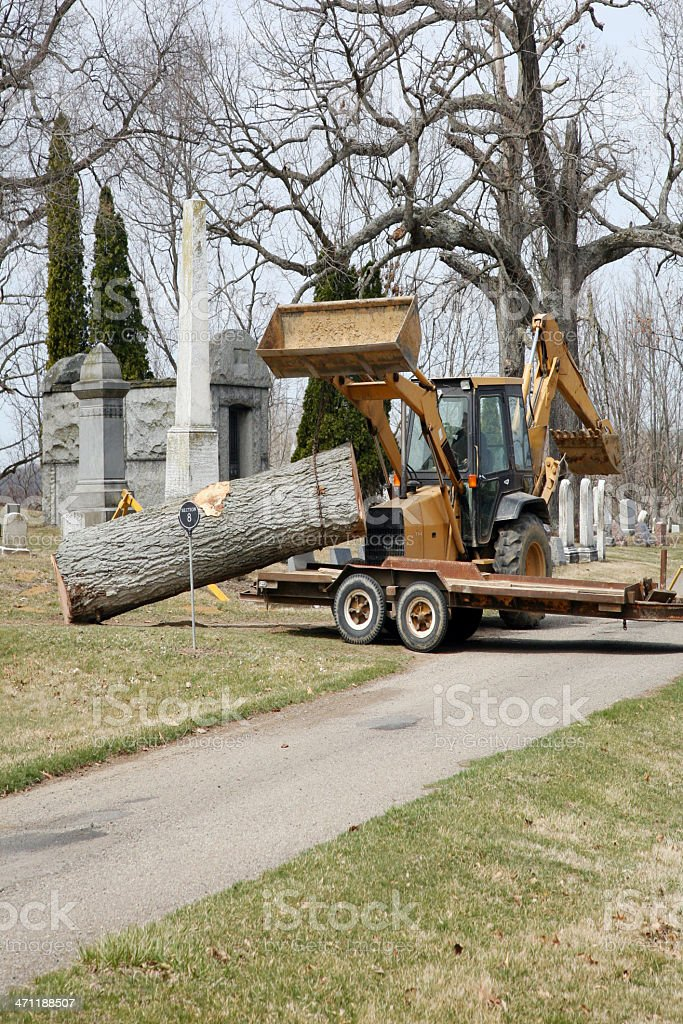 Tree Removal In A Cemetary stock photo