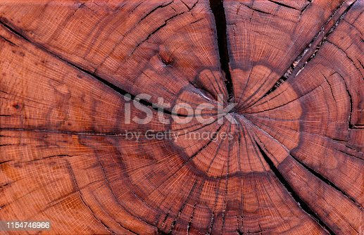 Wooden texture background. Wooden cross section cut by saw. Tree ring