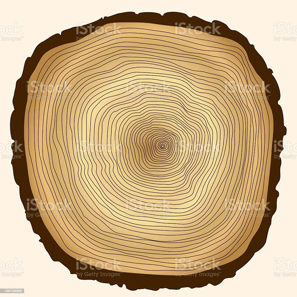 Tocón de árbol de anillos de corte - foto de stock