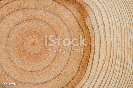 Close-up shot of tree rings texture background.