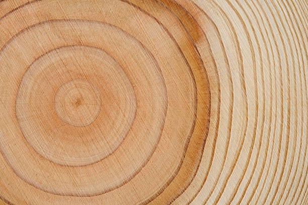 나무 환상체 애니메이션 배경 - 목재 재료 뉴스 사진 이미지