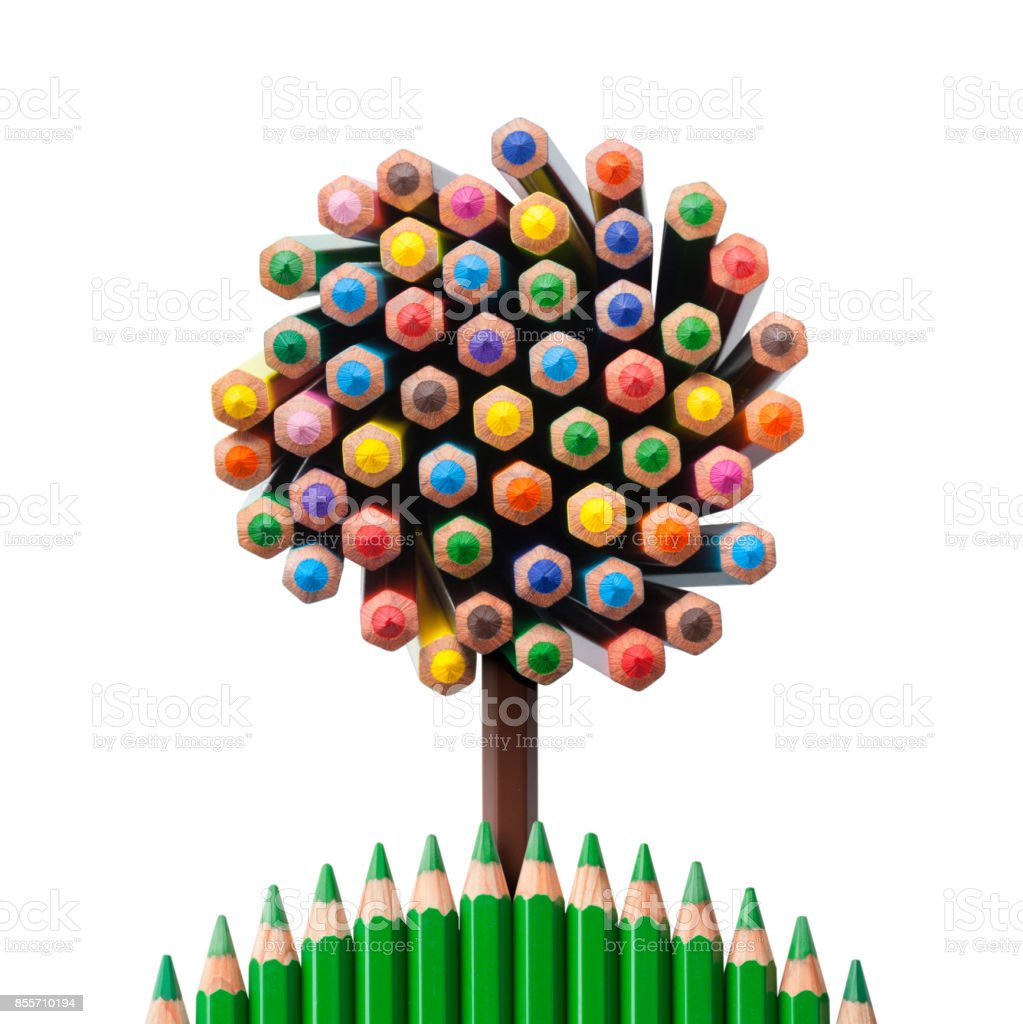 Tree shaped made of colored pencils stock photo