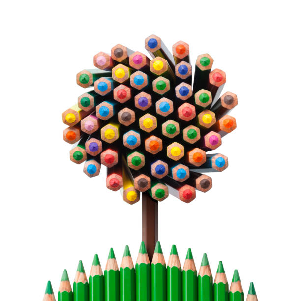 tree shaped made of colored pencils - coloured pencil stock photos and pictures