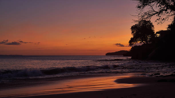 Tree silhouette against amazing sunset on the beach Playa Cacique on Contadora island stock photo