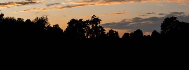 Tree Silhouettes During Dramatic Sunset, Ohio USA stock photo