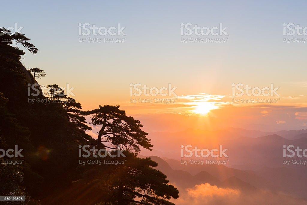 Tree silhouettes on mountain at sunrise stock photo